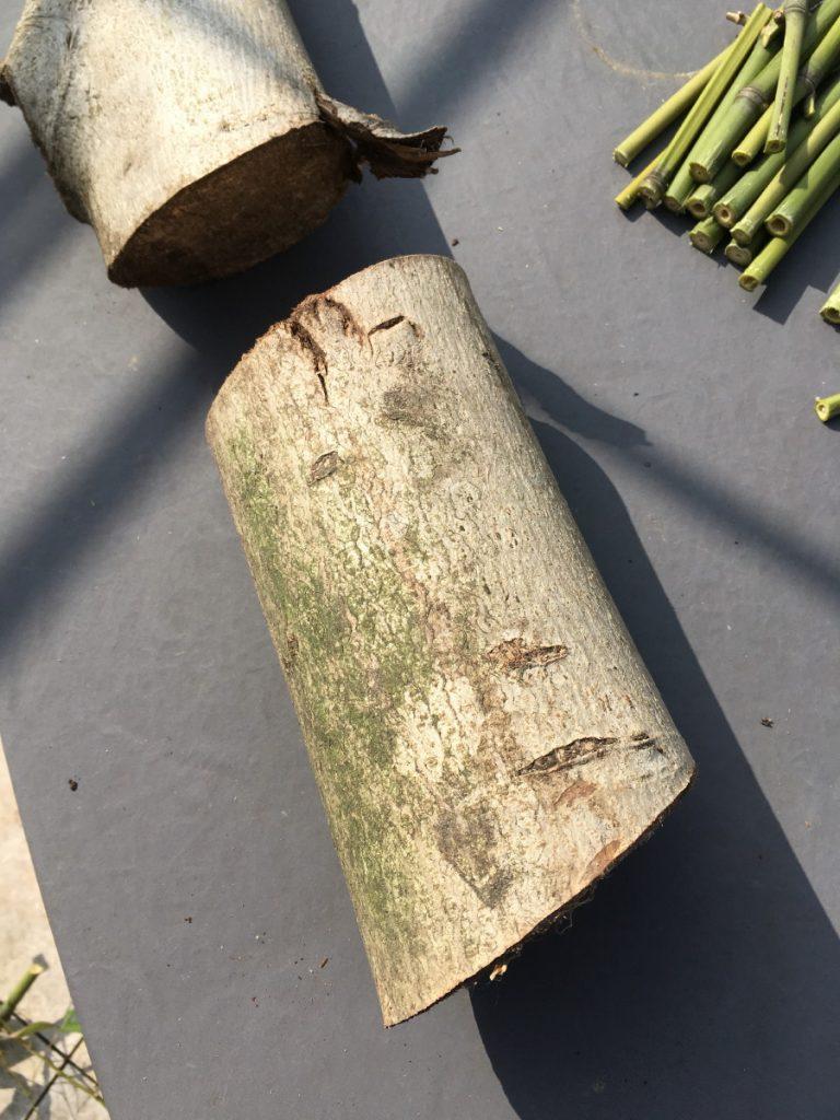 Ein Nußbaum-Scheit dient als Basis für die Nisthilfe