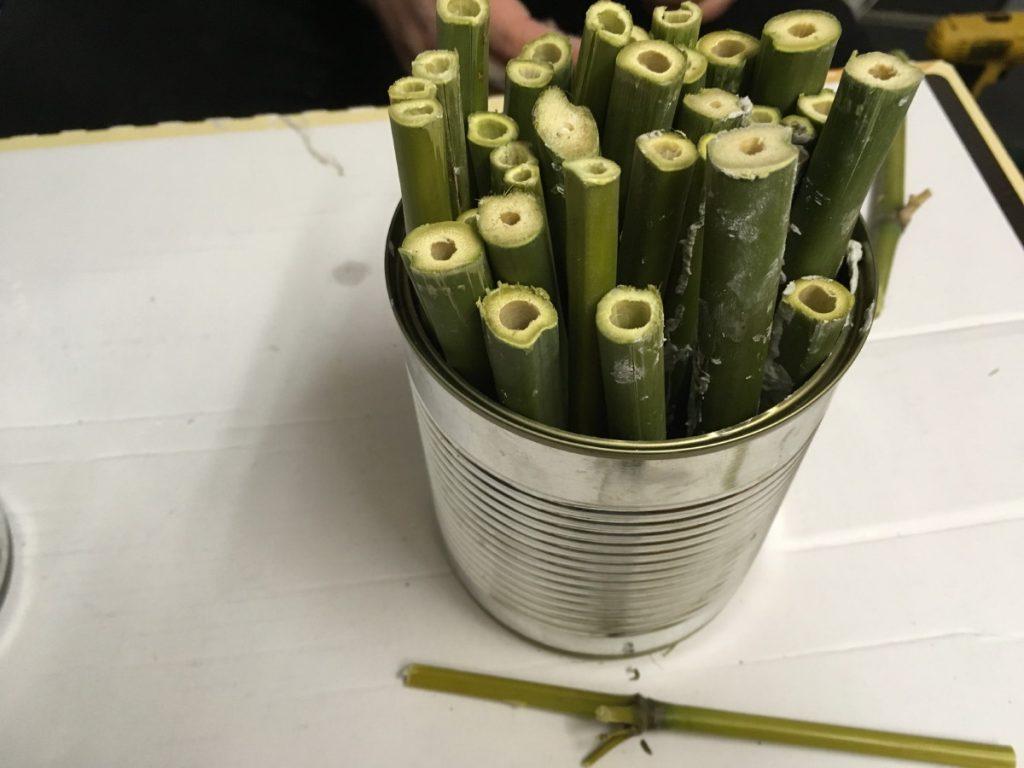 Fertige Dose mit den unterschiedlichen Bambus-Abschnitten
