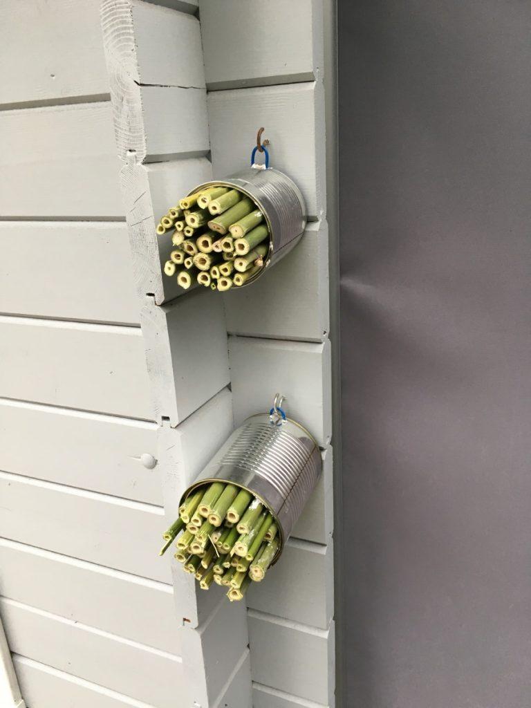 Hängen Sie ruhig mehrere Nisthilfen auf - wer weiß, welche Bienenarten sich in Ihrem Garten aufhalten ...